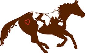 Açıklama: 2201 - Atlar Hakkında Bilmediklerimiz